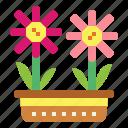 blossom, botanical, flowers, nature icon