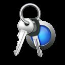 access, car keys, keychain, keys, password icon