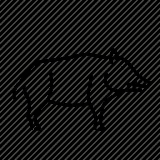 animal, boar, mammal, nature, wild, wild pig icon