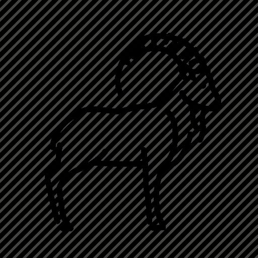 Animal, animals, mammal, mountain goat, nature, wild icon - Download on Iconfinder