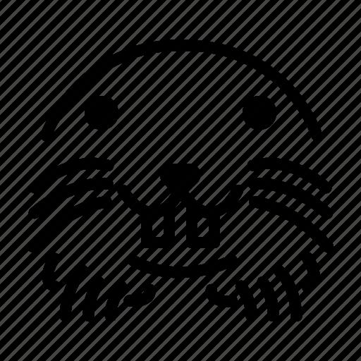 Mole, mammal, animal, wildlife icon - Download on Iconfinder
