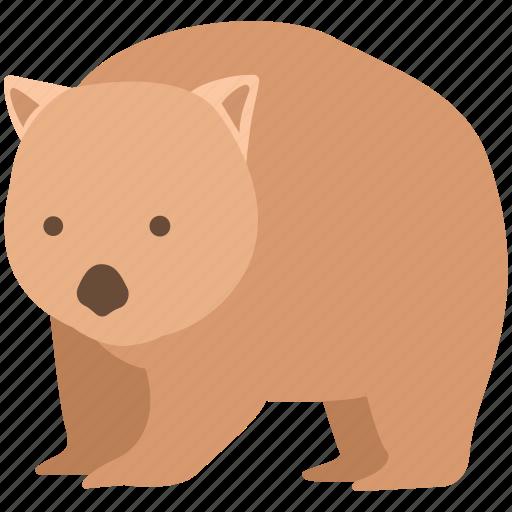 animal, australia, burrowing, common, cute, marsupial, wombat icon
