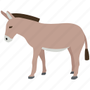 animal, democratic, democrats, donkey, farm, mule, vote icon