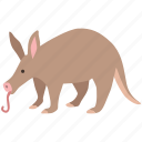 aardvark, african, ant bear, anteater, cape, insectivore, nocturnal icon