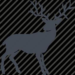 animal, deer, mammals, wild icon