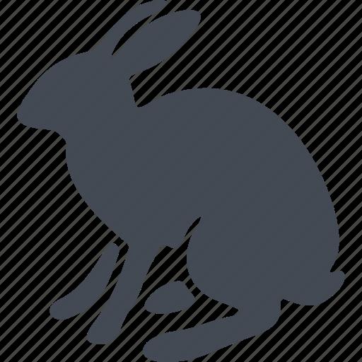 animal, ears, hare, mammals icon
