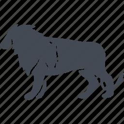 animal, lion, mammals, vermin, wild icon