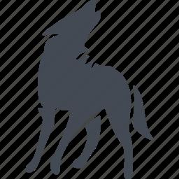 animal, mammals, predator, wild, wolf icon