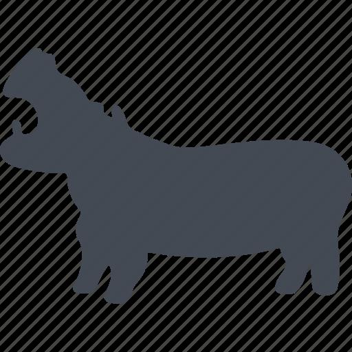 animal, hippo, hippopotamus, mammal, mammals icon