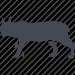 animal, lynx, mammals, predator, wild icon
