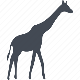 animal, giraffe, long neck, mammals, wild icon