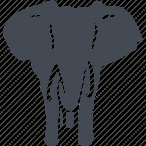 animal, ears, elephant, mammals, tusks icon