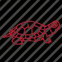 aquarium, box, pet, reptile, shell, turtle icon
