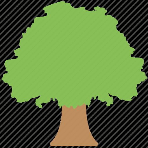 greenery, nature, organic, shrub tree, tree icon