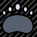 bear, clutches, footprint