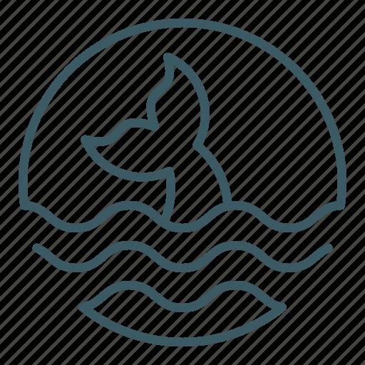 fin, fish, ocean, sea, whale icon