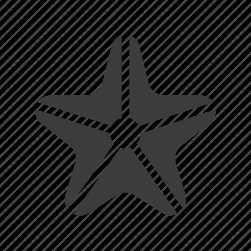 fish, marine, sea, starfish icon