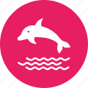 dolphin, fish, marine, sea, swim icon
