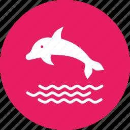 dolphin, fish, marine, sea, swim icon