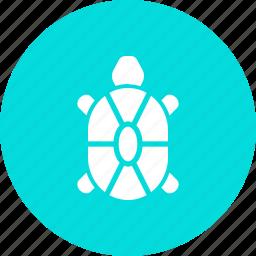 marine, sea, tortoise, turtle icon
