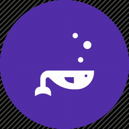 animal, fish, marine, sea, swim, whale icon