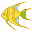 angel, angelfish, aquarium, fish, reef, tank, tropical icon