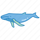 blue, humpback, mammal, sea, southern, spotting, whale icon