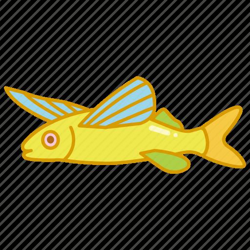 flying, flying fish, life, marine, ocean, sailfin icon