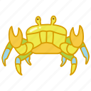 animal, crab, crustacean, marine, sea, seafood