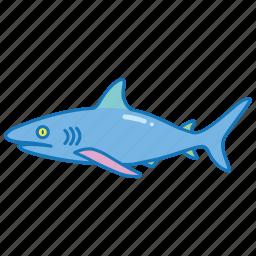 animal, danger, ocean, predator, sea, shark icon