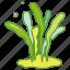 aquaculture, laver, ocean, sea, seaweed, weed icon