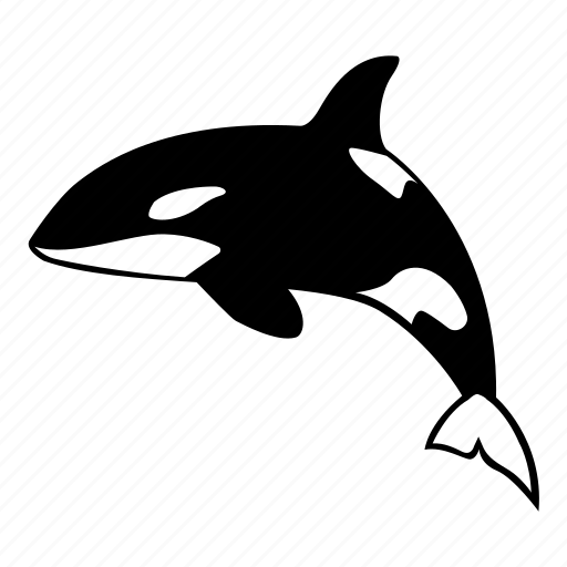 killer, mammal, ocean, orca, predator, sea, whale icon