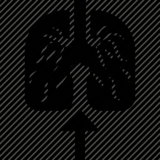 air, breathe, effort, lungs, wreath icon
