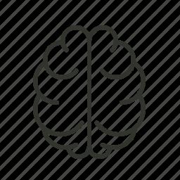 brain, creativity, knowledge icon