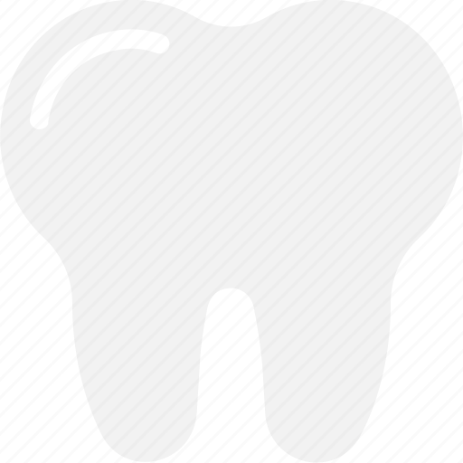 dentist, human tooth, molar, stomatology, tooth icon