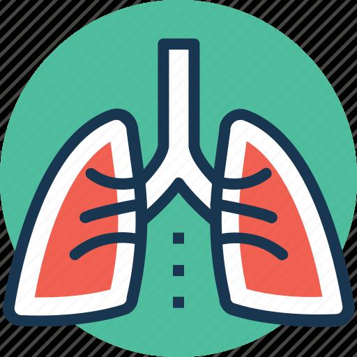 asthma, inhaling, lungs, respiratory organ, thorax icon