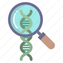 search, dna