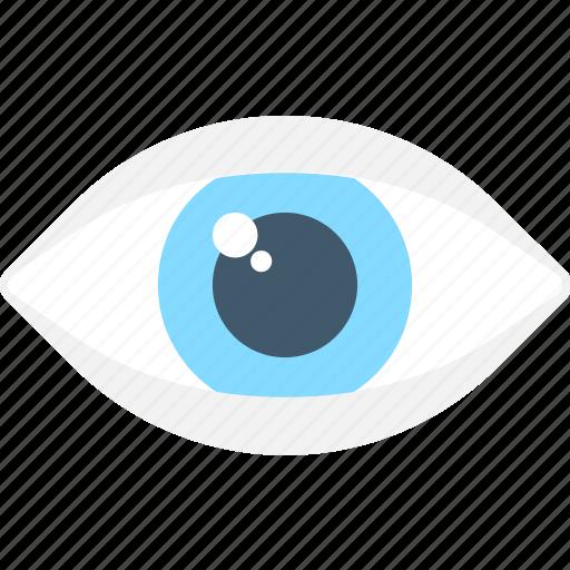 body part, eye, human eye, organ, view icon