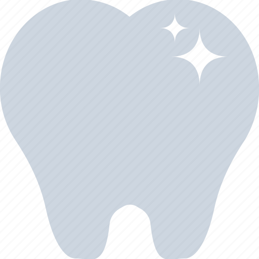 Dentist, human tooth, molar, stomatology, tooth icon - Download on Iconfinder