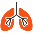 air system, anatomy, body, lung, lungs, patient, smoking icon