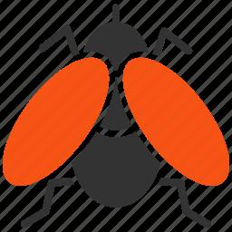 bug, drosophila, fly, infection, insect, midges, parasite icon