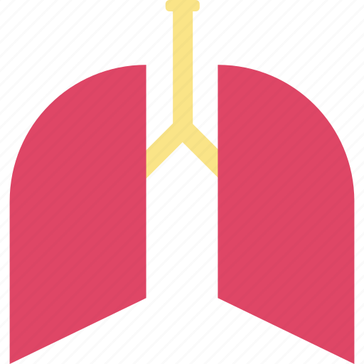 body part, breathe, human lungs, lungs, pulmonology icon
