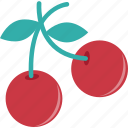 food, cherry, fruit, stone fruit, healthy food