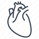 healthcare, heart, human, medical, medicine, organ icon