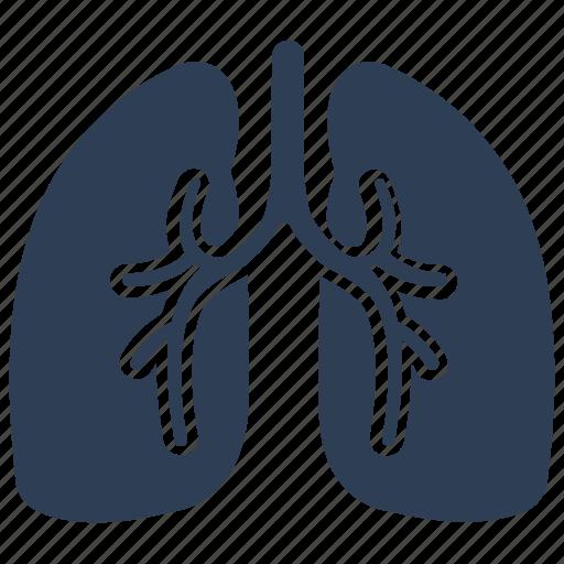 human, lung, lungs, organ, pulmonology icon