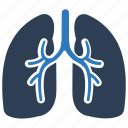 human, lung, lungs, organ, pulmonology icon