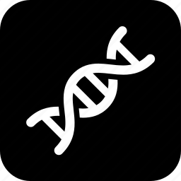dna, genetics, healthcare, human dna, medecine, medical, molecule icon