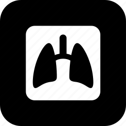 healthcare, lungs, medecine, medical, medical exam, test, x-ray icon