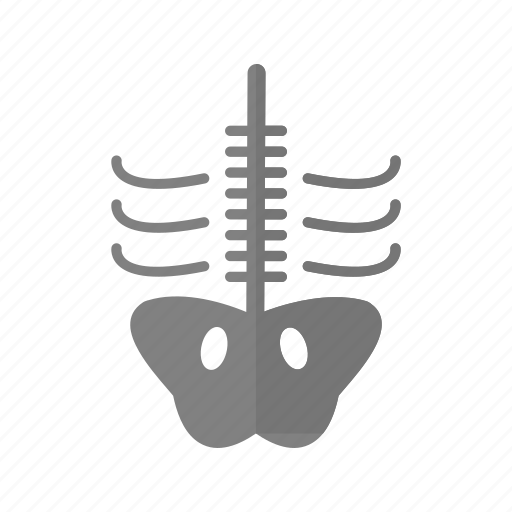 bone, skeleton, x ray, xray icon