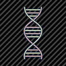 dna, genetics, helix, rna icon